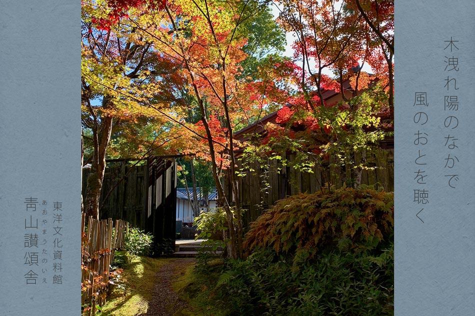 茶室の紅葉